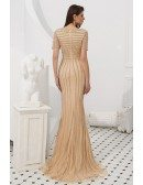 Unique Champagne Sleeved Mermaid Formal Dress With Beading Stripe